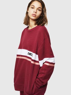 UFLT-PHYLO,  - Sweaters